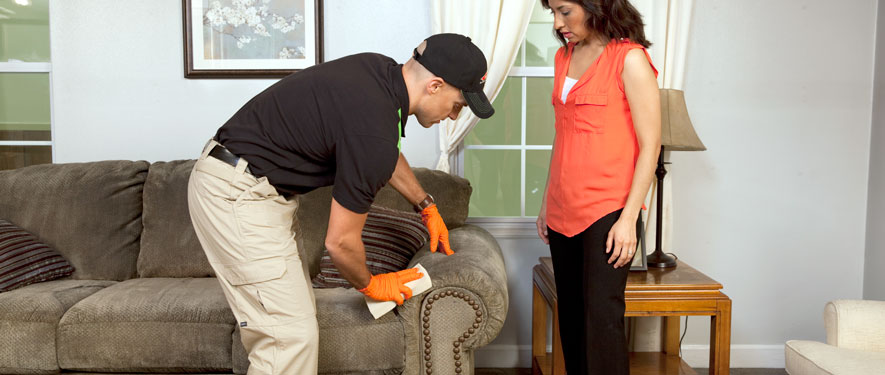 Ionia, MI carpet upholstery cleaning