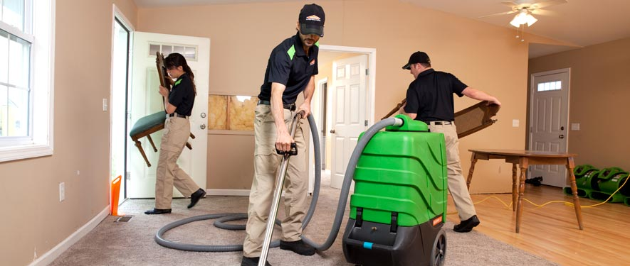 Ionia, MI cleaning services